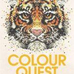Color Quest - 30 Geometric Designs