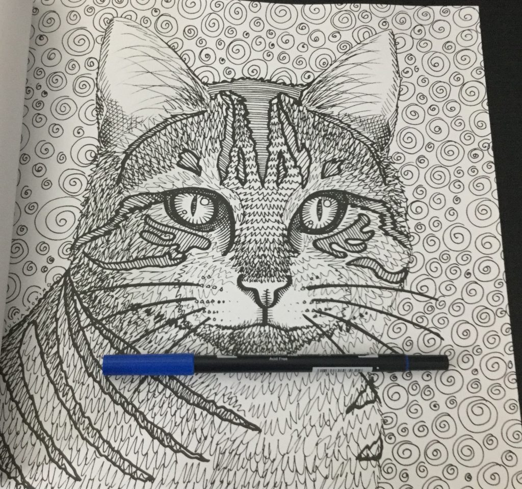 portrait of a patterned cat