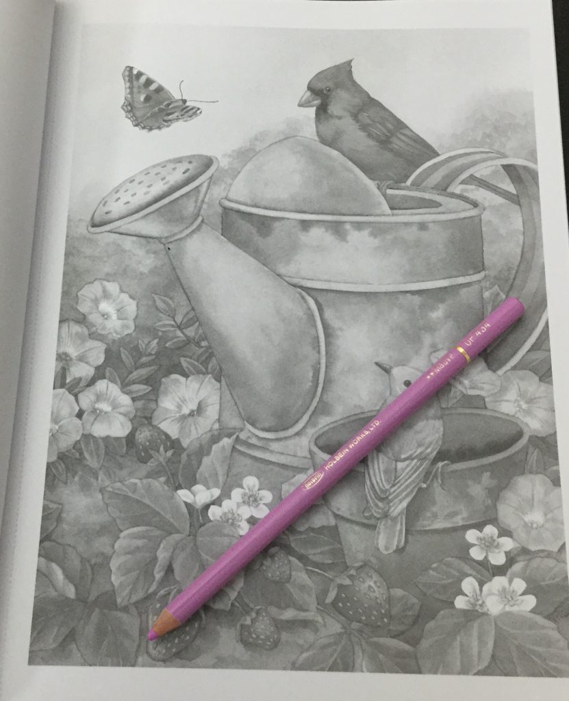 Adorable Animals Grayscale Coloring Book Coloring Queen
