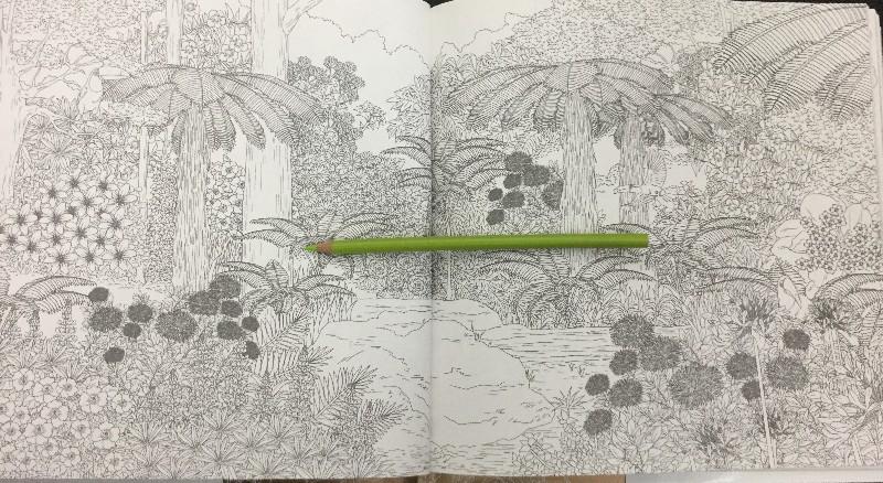 Extremely detailed illustration