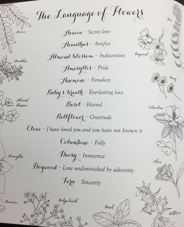 The language of flowers from Pride and Prejudice Coloring Book