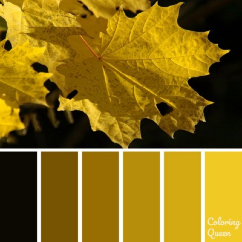 Yellow Autumn Leaves Color Palette