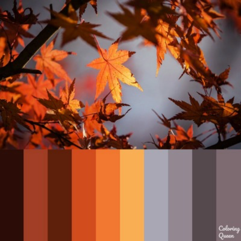 Autumn Leaves color scheme