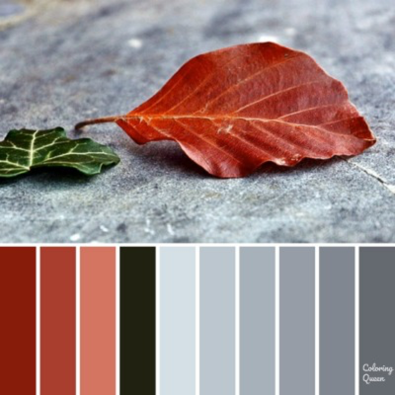 Leaf on concrete color scheme