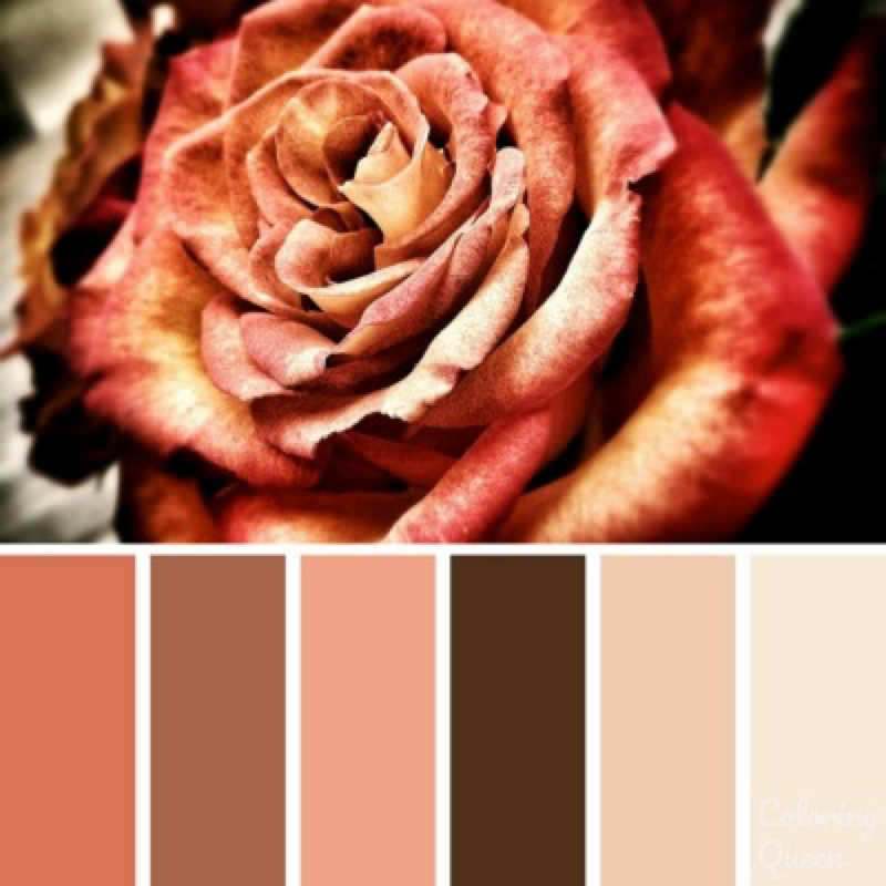 Vintage rose color scheme