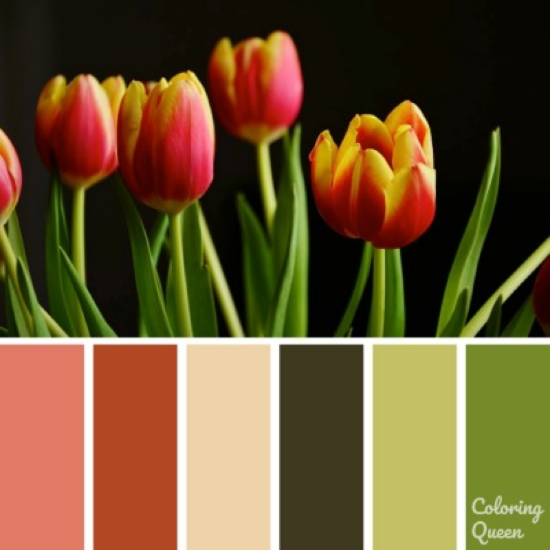 Red and yellow tulips color palette