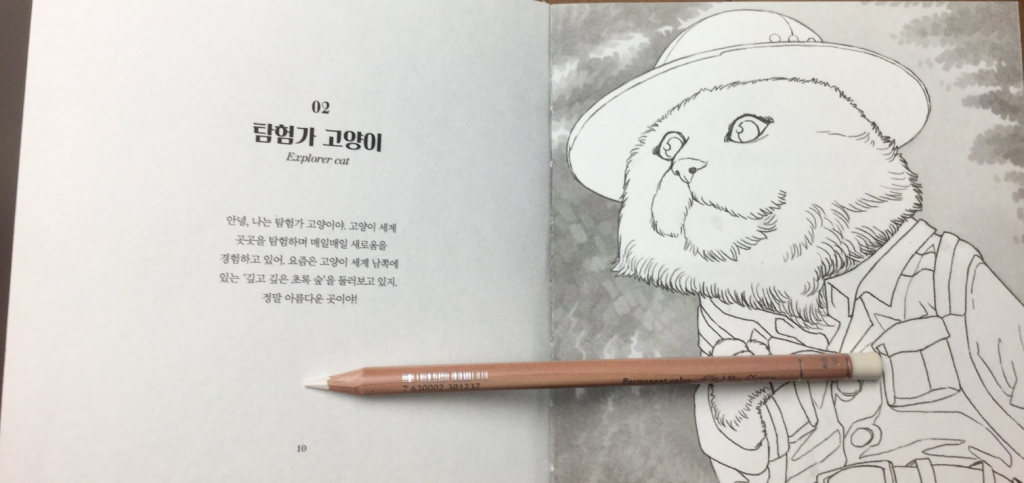 Cat dressed as an explorer from 100 Korean Cats coloring book