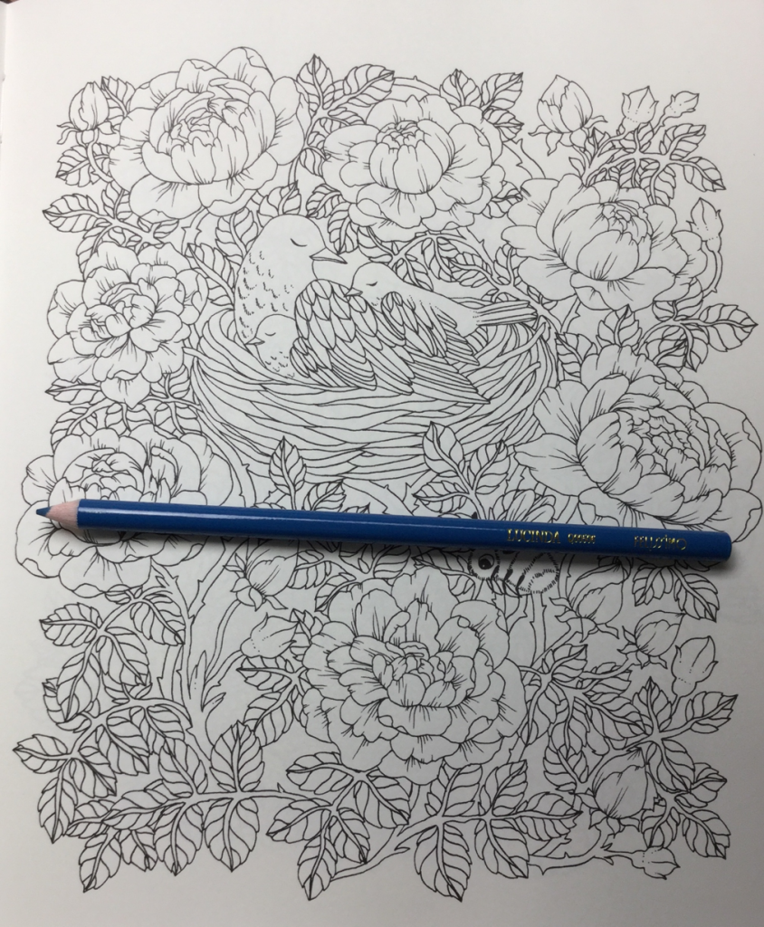 Botanicum coloring book featuring an abundance of flowers