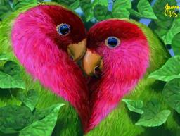 Colors Live Love Birds By Scorpio Art
