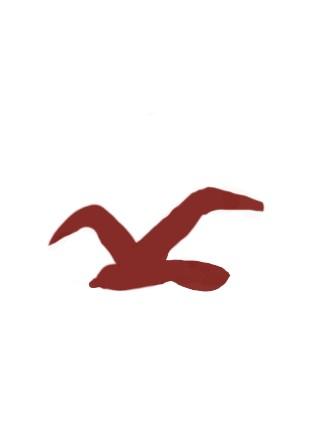 hollister bird logo
