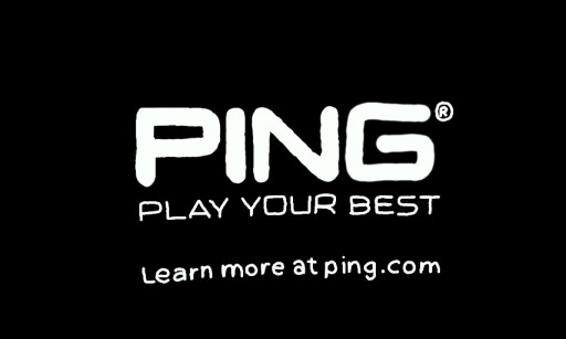 PING Logo by fcc323