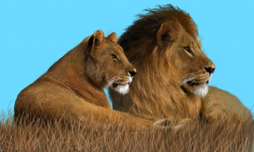 Lion Couple by Rich-Tea