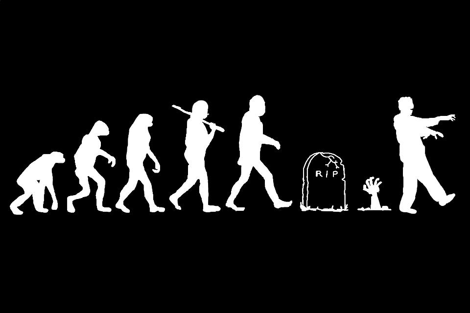 Картинки прикольные эволюция, для