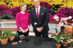 National Plant a Flower Day with Amanda Bettin