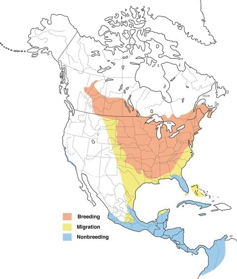 image of range map for Baltimore Oriole