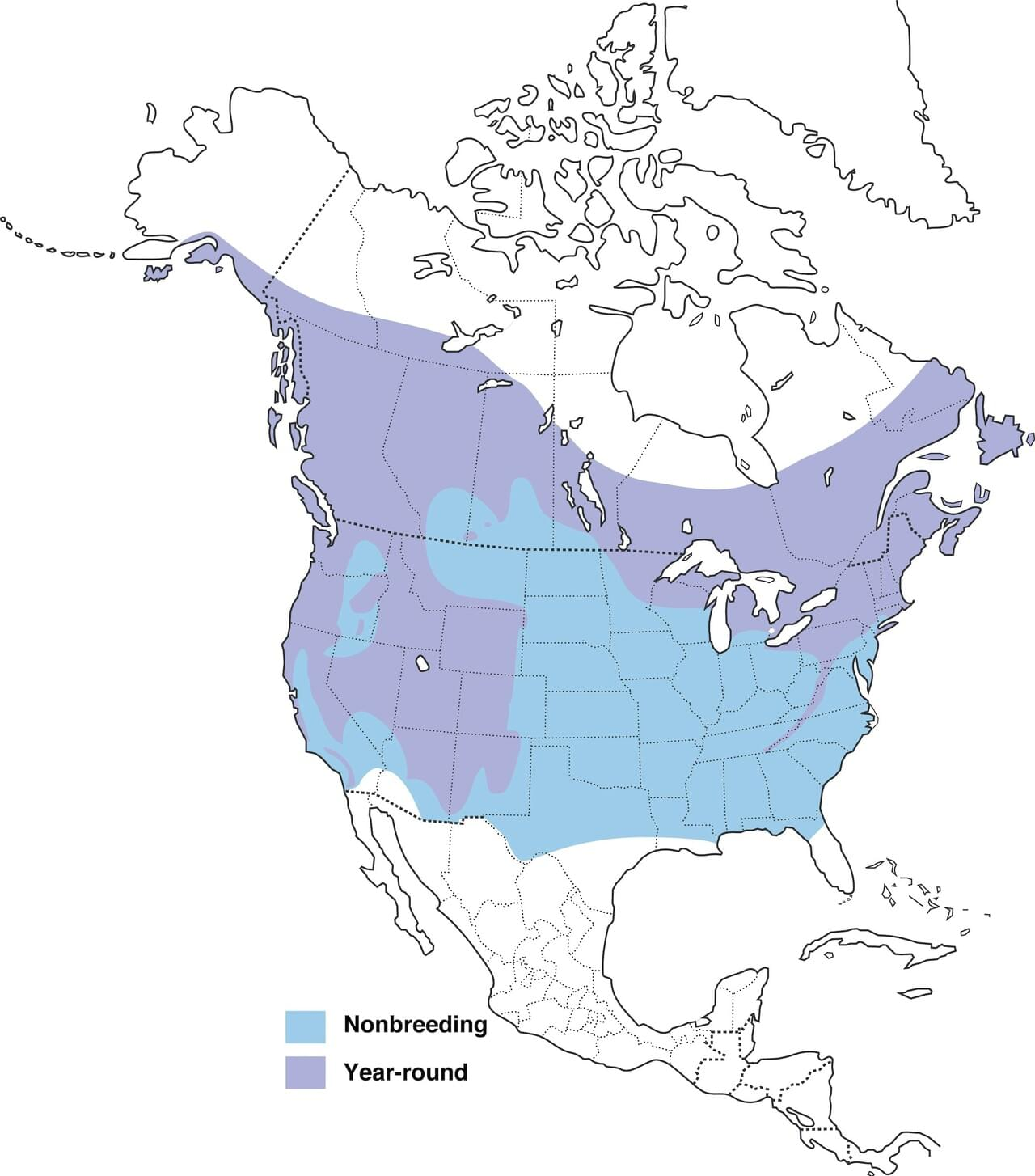 Brown Headed Nuthatch Range