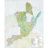 iFaune - Cerf de Virginie - Zec Normandie (2020)