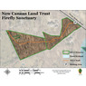 New Canaan Land Trust: Firefly Sanctuary