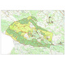 forcella geo