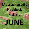 Massachusetts Haddock Fishing - June