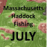 Massachusetts Haddock Fishing - July