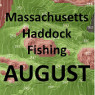 Massachusetts Haddock Fishing - August