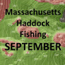 Massachusetts Haddock Fishing - September