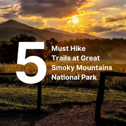 5 Must Hike Trails at Great Smoky Mountains National Park