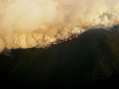 Arizona Forest Fire