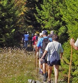 An adventurous group of hikers follows the trail.