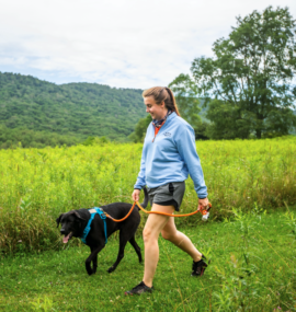 Person walking a dog on hiking trail