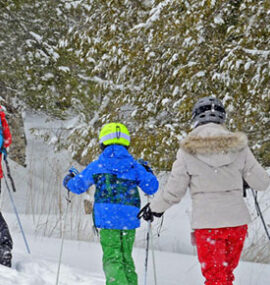 A family cross-country skis through the snowy woods.
