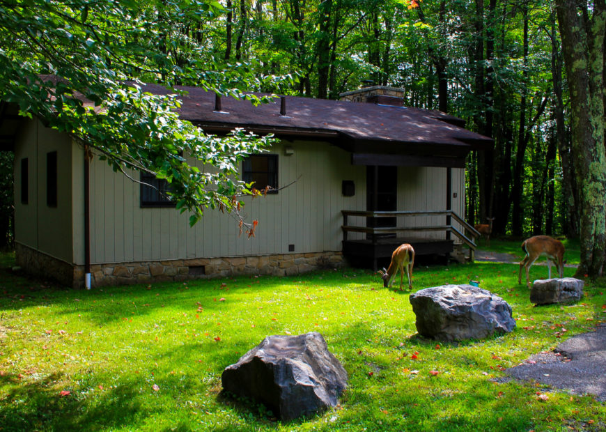 Lodging Cabin Exterior