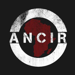 The African Network of Centers for Investigative Reporting