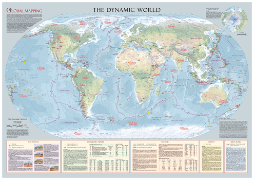The Dynamic World Wall Map - Large