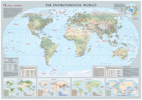 Environmental World Wall Map - Large
