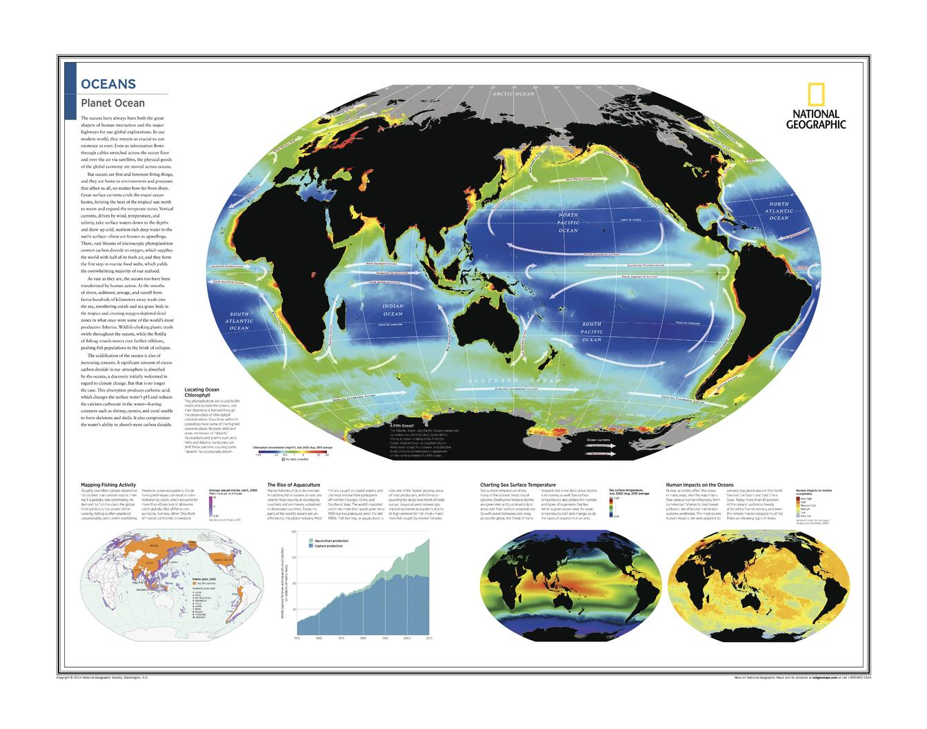 Oceans: Planet Ocean