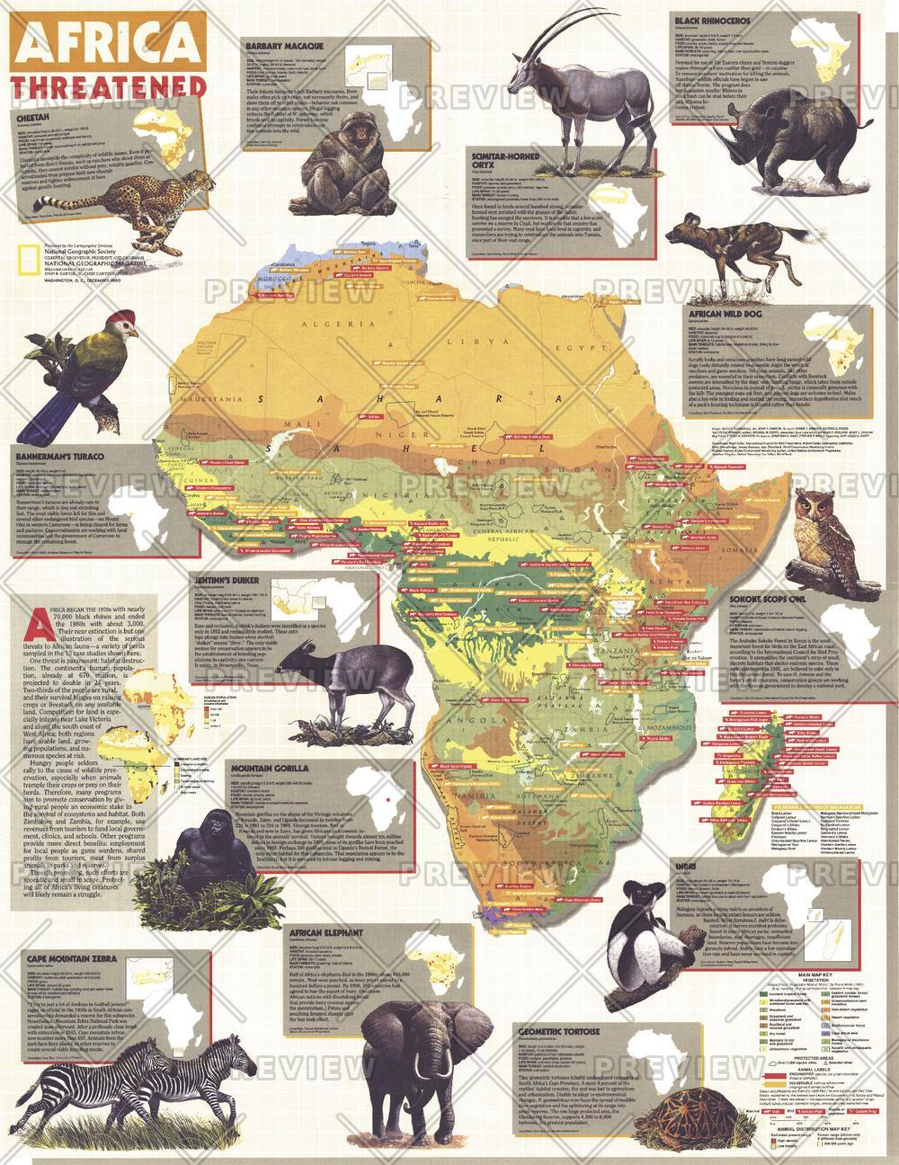 Africa Threatened  -  Published 1990