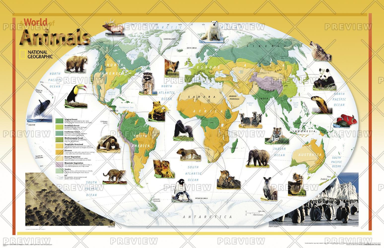 World of Animals  -  Published 2004