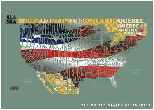 Graphic Map USA - flag