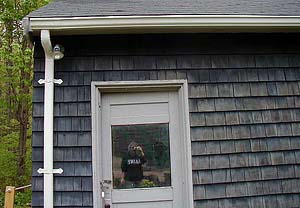 Wendy Clark | No tourist | Falmouth, Maine