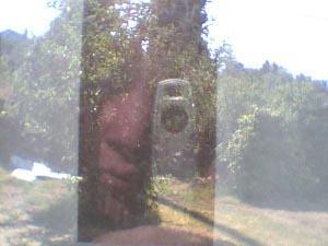 Leslie | Thru the back window.... | San Jose, CA
