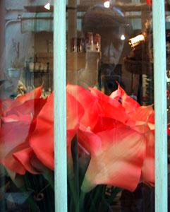 Karl Dubost | Red Flowers | Valbonne, France