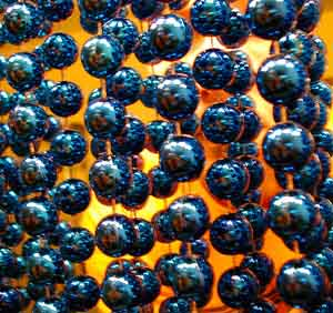 Brian Sienko | More of Me in Blue Beads? | Again at home
