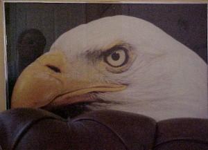 howard | Patriotic | office, Shelbyville, KY