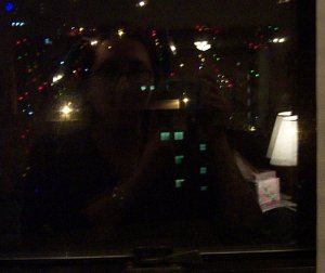 Carol | Window Lights | Pittsburgh, PA