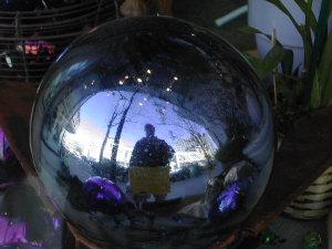 Robby B | Garden Globe | Madison, WI