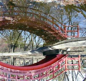 Kossowski Pal | Shrine park | Outskirts of Tokyo