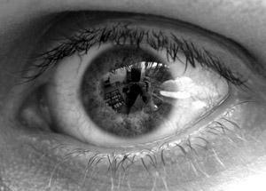 Tarsh Fletcher | See what I see | Australia