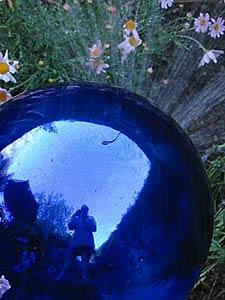 Erin Malone | blue garden | san jose, california